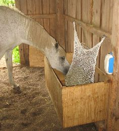 New solutions Horse Hay, Horses, Hay Feeder, Outdoor Furniture, Outdoor Decor, Hammock, Ranch, Sweet Home, Products