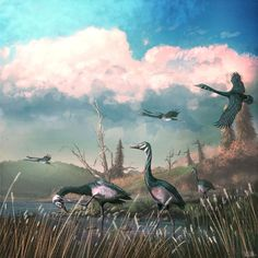 #Paleoart of one of my favourite Cenozoic dinosaurs: the near-goose Conflicto antarcticus. These birds look modern, but are ancient, living immediately after the extinction of non-bird #dinosaurs. Prehistoric Wildlife, Prehistoric Creatures, Extinct Animals, Extinct Birds, All Dinosaurs, The Ancient One, Comic Books Art, Book Art, Creature Design