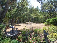 Backyard garden and open spaces