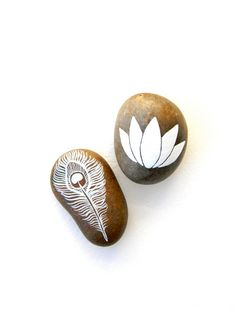 Peacock Feather & Lotus Flower