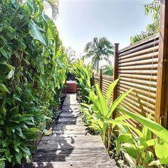 Jacuzzi, Destinations, Garden Bridge, Villas, Outdoor Structures, Friends, Plants, Luxury Villa, West Indies