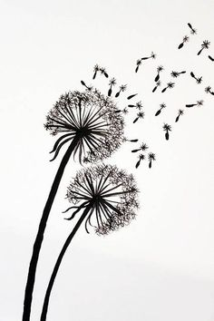 Tutorial for Painting Dandelion Wall Graphic. Another idea for a watercolour painting! Painting Techniques, Art Tutorials, Painting Inspiration, Diy Art, Painting & Drawing, Wall Drawing, Art Drawings, Flower Drawings, Cool Art