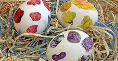 Easy Easter Craft : Use Decoupage for Natural Egg Decor! #sp