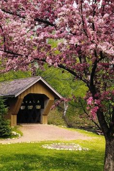 ~ Cherry Blossoms and Old Covered Bridge ~ ♥