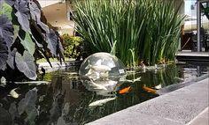 Domo para estanque de peces en Andares. Aquaentornos