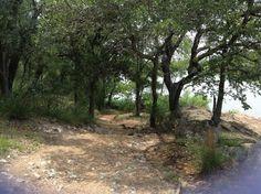 trail at Inks Lake
