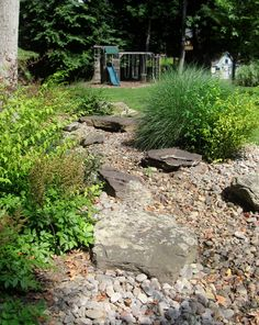 Rain Gardens, Stormwater Management, and Drainage Solutions