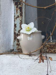 Pottery, Wreaths, Instagram, Home Decor, Art, Handmade Pottery, Ceramica, Homemade Home Decor, Door Wreaths