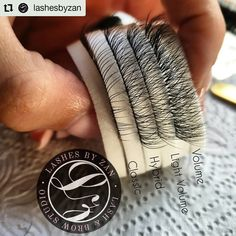 Display of different Eyelash Extensions CLASSIC,  HYBRID, LIGHT VOLUME,  VOLUME Eyelash Extensions Classic, Brow Studio, Eyelashes, Brows, Rings For Men, Display, Lashes, Floor Space