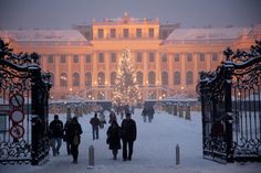 Christmas Market at Schönbrunn Palace, Vienna, Austria. © MTS / Gerhard Fally - http://www.schoenbrunn.at/en/services/media-center/photo-gallery/christmas-market-schoenbrunn.html
