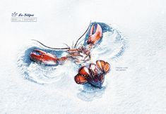 Le Silpo Delicacy Grocery Store: Snow angel | Ads of the World™