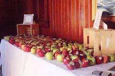 Harvest Apple Theme Wedding Place Card Idea from Dreamlove Wedding Photography