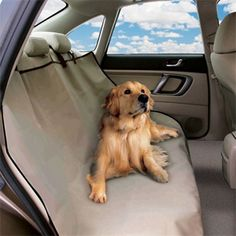 Protect your backseat from pet hair and dirt with the I Heart Pets Auto Seat Cover! 50% Off - $20, FREE shipping! #HalfOffDeals #AutoSeatCover #DogHair #PetHair #CatHair #CleanCar