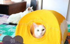 Un t-shirt et des cintres ? De quoi fabriquer une maison pour chat !