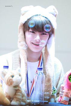 sɴsʜʟʏɴ-ғᴀᴛᴍᴀ.ɪᴢᴍ Busan, Chan Lee, Animal Hats, Music Like, Kids Wallpaper, Lee Know, Minho, Boy Groups, Baby Kids