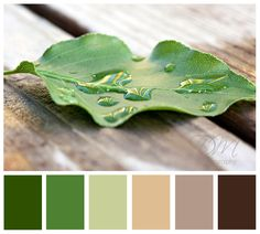 Color palette for Faux Tile Floor, using the two lighter greens and and mauve undertones