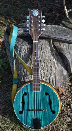 Vicki Shell, of Johnson City, TN. Vicki is a musician and builds mandolins out of canteen gourds.