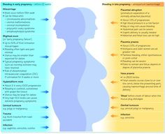 Bleeding and Pain during Pregnancy - OB - Peds Nursing School