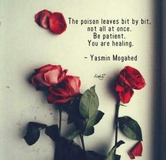 The poison leaves bit by bit, not all at once. Be patient. You are healing -Yasmin Mogahed