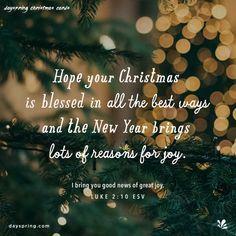 Christmas Card Verses, Christmas Wishes Messages, Merry Christmas Message, Christmas Ecards, Merry Christmas Quotes, Christmas Blessings, Christmas Love, Christmas Holidays, Christmas Walpaper