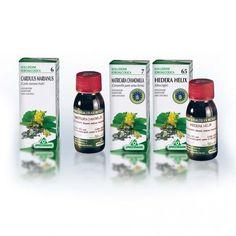 Hedera Helix, Achillea, Centella, Salvia, Calendula, Products, Body, Sport, Madrid