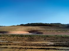 Antinori Winery by Archea Associati | Design by subtraction | ARCHISCAPES