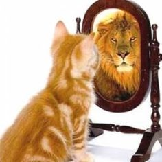 Google Image Result for http://tawawnlowe.com/wp-content/uploads/2011/12/self-confidence.jpg