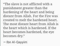 Ibn Al Qayyim ♥♡♥