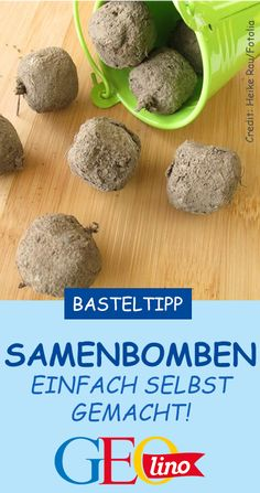Samenbomben machen Bring the flowers back to nature – with self-made seed bombs! The instructions are on it GEOLINO. it Yourself Related posts: DIY spring – make seed bombs yourself, flower meadow to go, crafts in spring Diy Home Crafts, Homemade Crafts, Crafts To Sell, Easy Crafts, Crafts For Kids, Rock Crafts, Garden Crafts, Diy Gardening, Seed Bombs