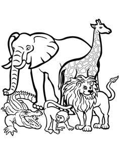 Land Animals Coloring Sheets