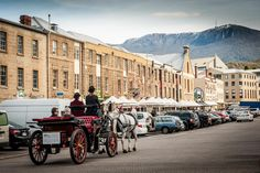 See the Historic Salamanca Waterfront by horse drawn carriage on your Lap of Tasmania road trip Tasmania Road Trip, Tasmania Travel, Van Diemen's Land, Horse Carriage, Horse Drawn, Beautiful Places To Travel, Historical Sites, Tourism, Turismo
