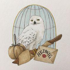#harrypotter#hpdrawing#owl