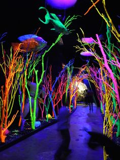 """Meow Wolf in Santa Fe, NM.  Great place for a vacation with teens from the author of """"Game of Thrones"""" R.R. Martin"""