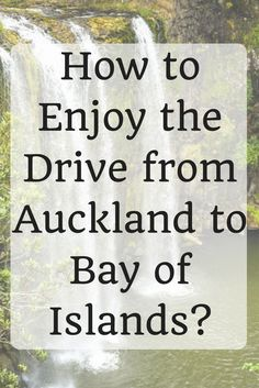 Looking for a day trip to take while staying on the North Island of New Zealand? Consider heading north on a scenic drive from Auckland to Bay of Islands. North Island New Zealand, South Island, Australia Honeymoon, Australia Travel, Travel Guides, Travel Tips, Travel Destinations, Travel Plan, New Zealand Travel Guide