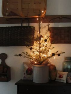 Little live tree in vase or planter with lights.