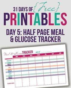 A Filofax Blood Sugar Tracker Type  Diabetes Planner Blood