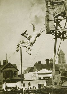 """Diving horses- One of my favorite movies growing up was """"Wild Hearts Can't be broken"""" watched it nearly every week at Gracie's house :)"""