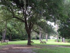 Eden State Park Florida-SUP Radio