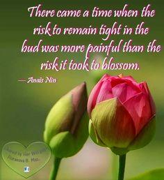 Blossom like a flower quote via Her Will at www.Facebook.com/HerWillToBeORnotToBe