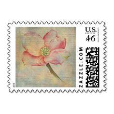 Pink Dogwood Postage Stamp