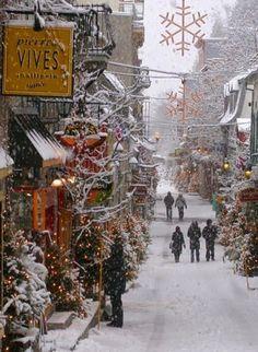 Snowy Day, Quebec City, Canada photo via terri