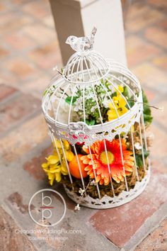Orchid Garden at Church Street Florida Themed Wedding Bird Cage Aisle Decor Photography By: @orlandowedding  Entertainment and Lighting by: @WhiteRoseEnt