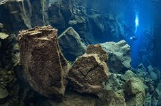 A diver in a continental trench in Silfra, Iceland