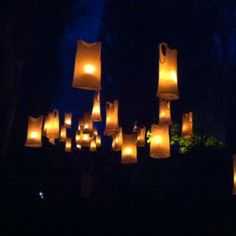 Milton Keynes international festival- vest top lanterns