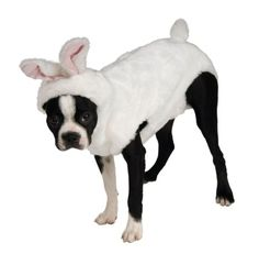 Rubies Costume Rubies Bunny Rabbit Pet Costume, Small - http://www.thepuppy.org/rubies-costume-rubies-bunny-rabbit-pet-costume-small/