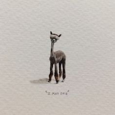 365 Postcards for Ants by Lorraine Loots - Day 132: Here's a shaved alpaca to counteract the Monday Blues