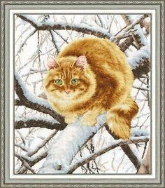 Золотое Руно К-010 «Рыжий кот»