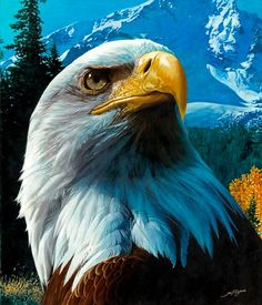 [Visit to Buy] diamond embroidery bird diy diamond Painting eagle pictures diamond mosaic Needlework diamond picture home decor canvas gift The Eagles, Bald Eagles, Aigle Animal, Eagle Drawing, Eagle Painting, Eagle Pictures, Eagle Art, Eagle Totem, Eagle Tattoos