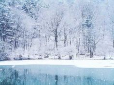"▶ Aretha Franklin - ""Winter Wonderland"" (YouTube)  *  Simply the greatest version of this song, ever.  EVER.  :)"