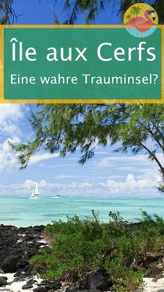 """Ile aux Cerfs. Man liest ja immer, wie paradiesisch schön die Insel sein soll. """"Untouched"""" Island steht z.B. auf der eigenen Webseite der Insel. Doch hält sie, was sie verspricht? Findet man dort wirklich noch einsame Strände, wunderschönes, türkises Wasser und weißen Pudersand? Wir werden in diesem Blogpost unsere Erfahrungen mit dir teilen. Parasailing, Mauritius Travel, Travel Couple, Travel Agency, Beautiful Islands, Strand, Have Fun, Couple Photos, World"""